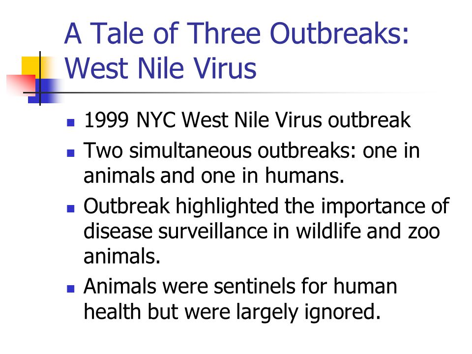A Tale of Three Outbreaks: West Nile Virus 1999 NYC West Nile Virus outbreak Two simultaneous outbreaks: one in animals and one in humans.