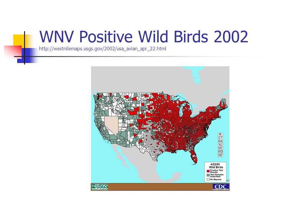 WNV Positive Wild Birds 2002 http://westnilemaps.usgs.gov/2002/usa_avian_apr_22.html