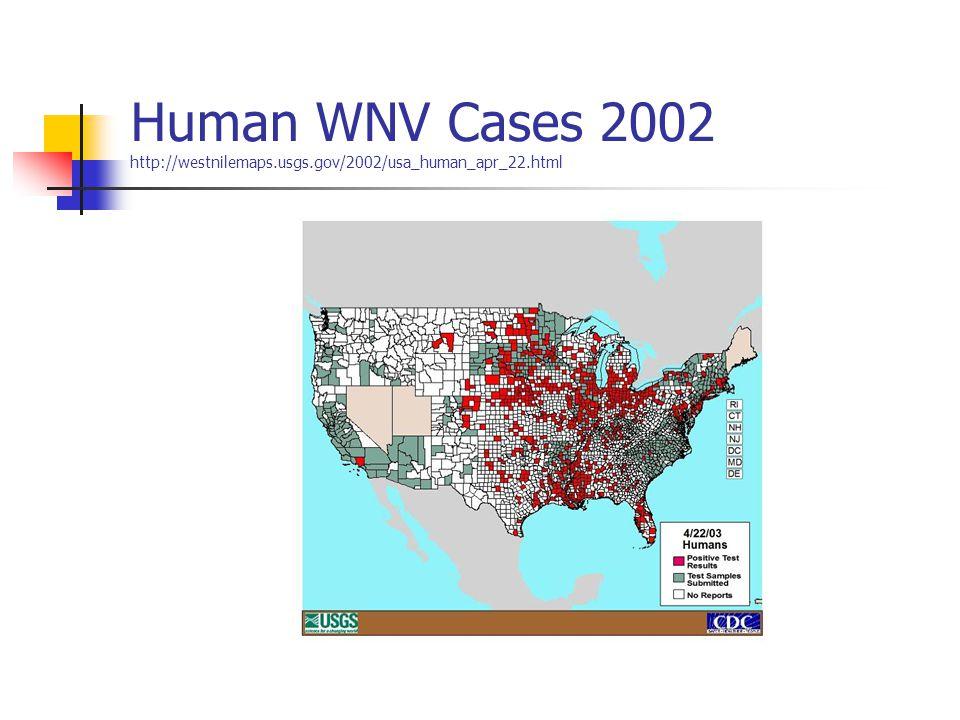 Human WNV Cases 2002 http://westnilemaps.usgs.gov/2002/usa_human_apr_22.html