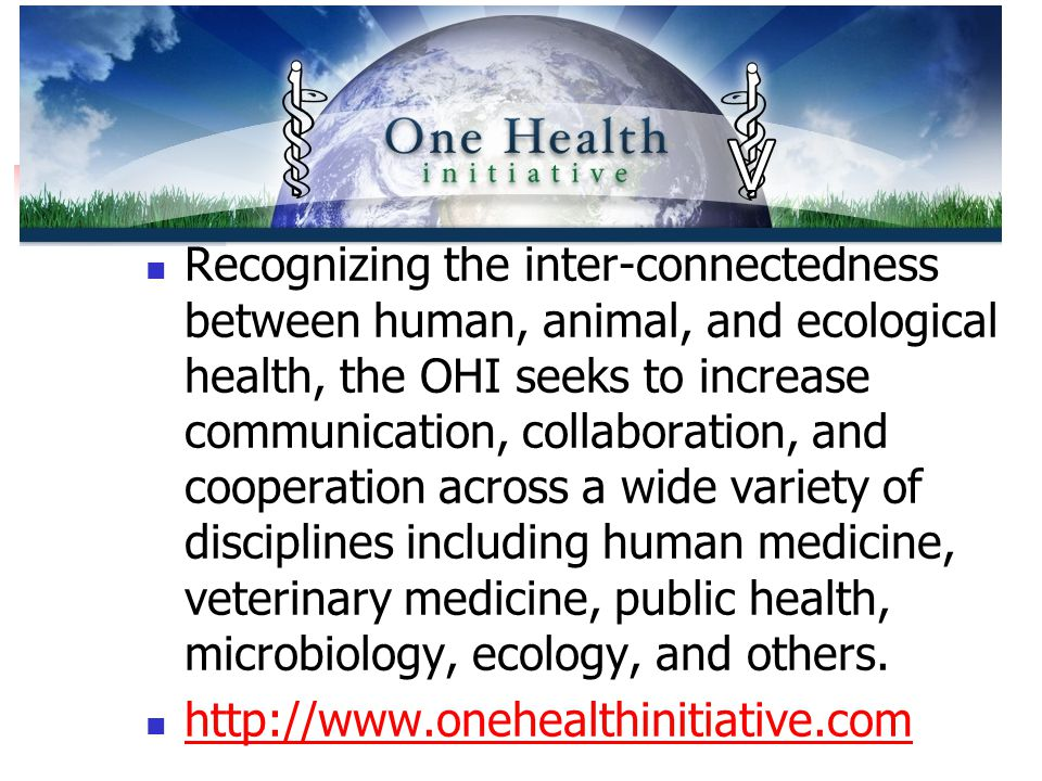 I. The One Health Initiative Recognizing the inter-connectedness between human, animal, and ecological health, the OHI seeks to increase communication