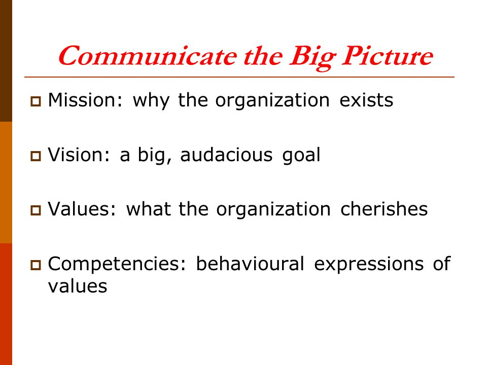 Communicate the Big Picture  Mission: why the organization exists  Vision: a big, audacious goal  Values: what the organization cherishes  Competencies: behavioural expressions of values