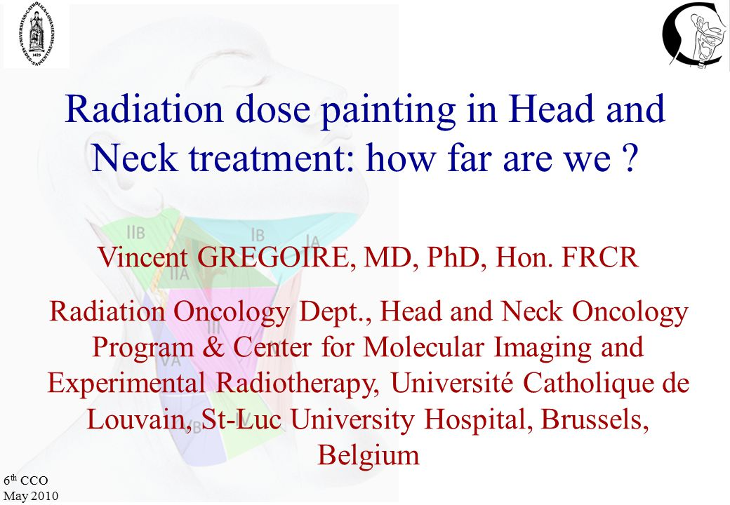 6 th CCO May 2010 Radiation dose painting in Head and Neck treatment: how far are we .