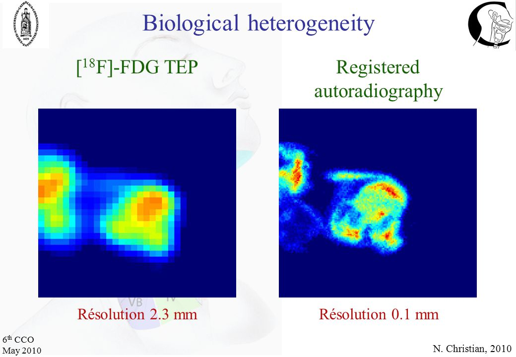 6 th CCO May 2010 [ 18 F]-FDG TEPRegistered autoradiography Résolution 2.3 mmRésolution 0.1 mm N.