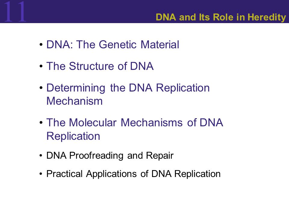11 DNA: The Genetic Material.The Question: WHAT MOLECULE CARRIES GENETIC INFORMATION.