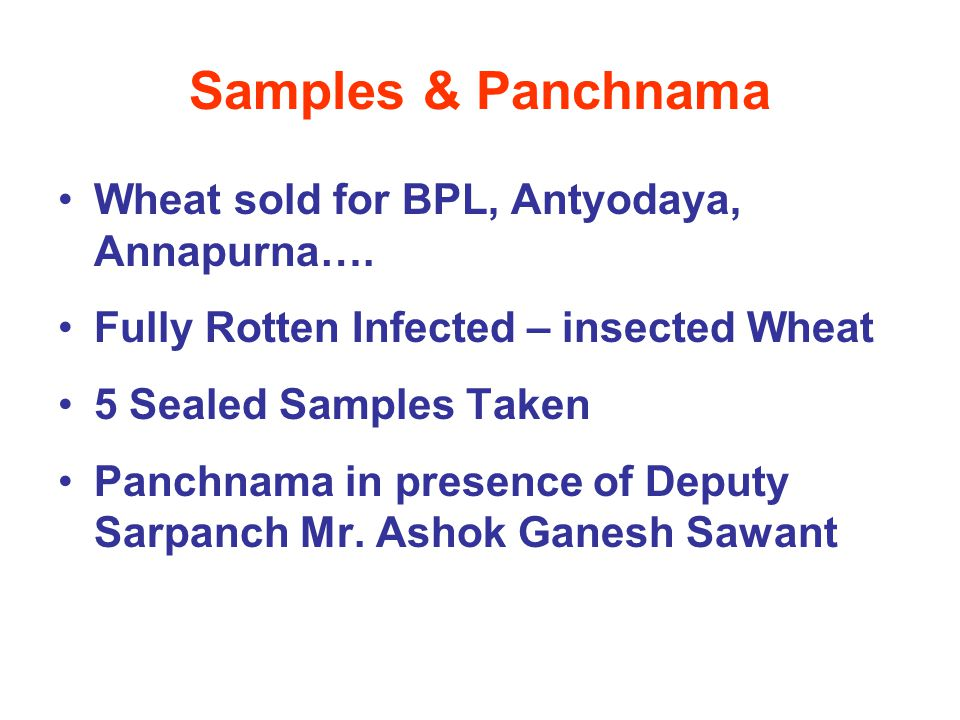 Samples & Panchnama Wheat sold for BPL, Antyodaya, Annapurna…. Fully Rotten Infected – insected Wheat 5 Sealed Samples Taken Panchnama in presence of