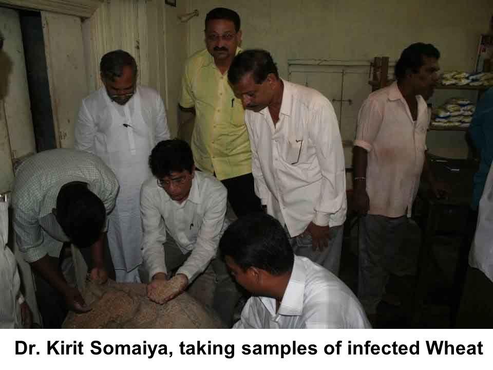 Dr. Kirit Somaiya, taking samples of infected Wheat