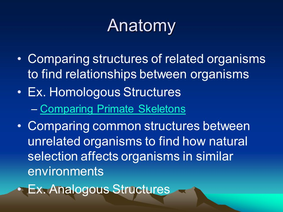 Anatomy Comparing structures of related organisms to find relationships between organisms Ex. Homologous Structures –Comparing Primate SkeletonsCompar