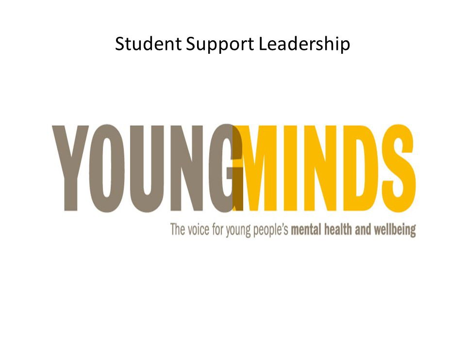 Student Support Leadership