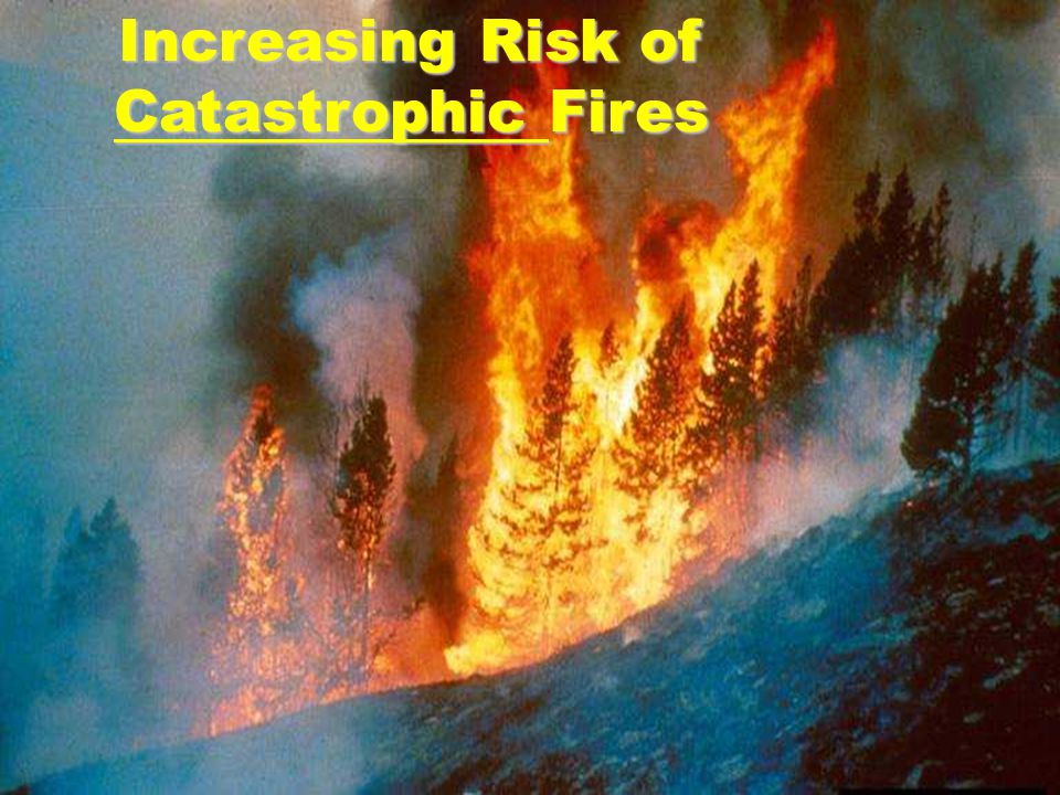 Increasing Risk of Catastrophic Fires