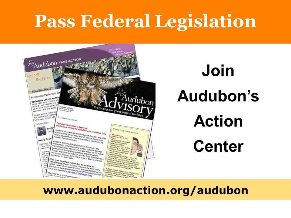 www.audubonaction.org/audubon Pass Federal Legislation Join Audubon's Action Center