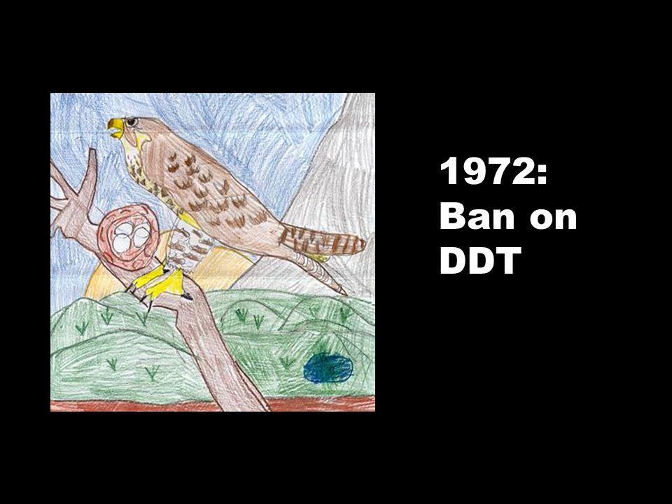 1972: Ban on DDT