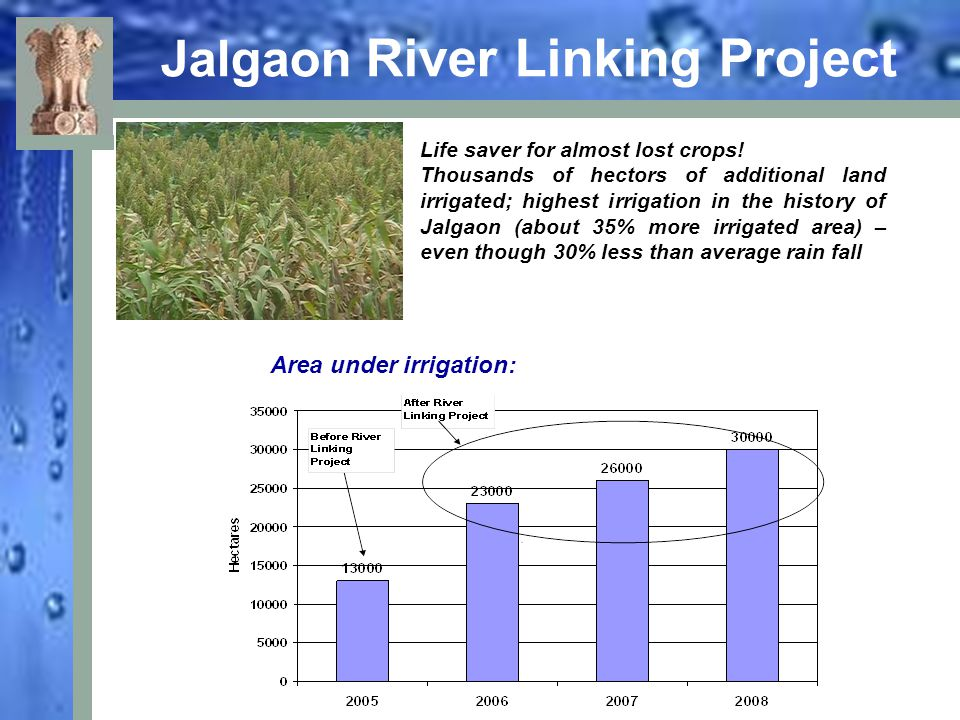Jalgaon River Linking Project Area under irrigation: Life saver for almost lost crops! Thousands of hectors of additional land irrigated; highest irri