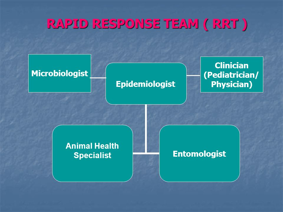 RAPID RESPONSE TEAM ( RRT ) Epidemiologist Animal Health Specialist Entomologist Clinician (Pediatrician/ Physician) Microbiologist
