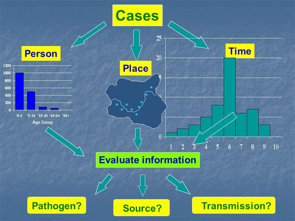 Person Place Time Cases Evaluate information Pathogen Source Transmission