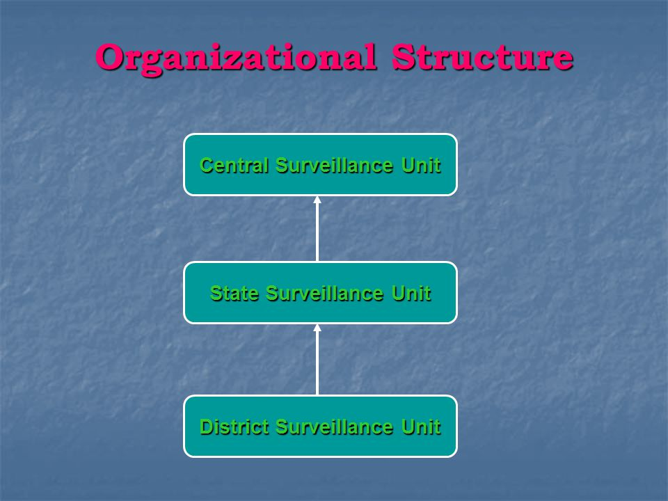 Organizational Structure District Surveillance Unit District Surveillance Officer Data Manager Data Entry Operator RRT TEAM RRT TEAM 1.Epidemiologist 2.Clinicians 3.Pediatrician 4.Microbiologist 5.Entomologist 6.Animal Health Specialist