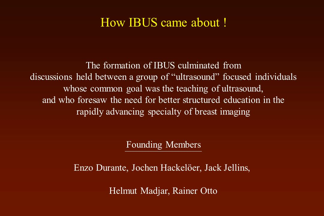 How IBUS came about .