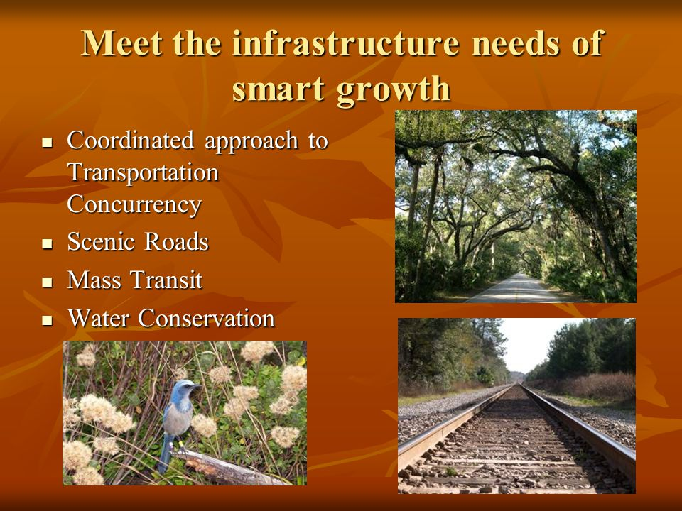 Meet the infrastructure needs of smart growth Coordinated approach to Transportation Concurrency Coordinated approach to Transportation Concurrency Scenic Roads Scenic Roads Mass Transit Mass Transit Water Conservation Water Conservation
