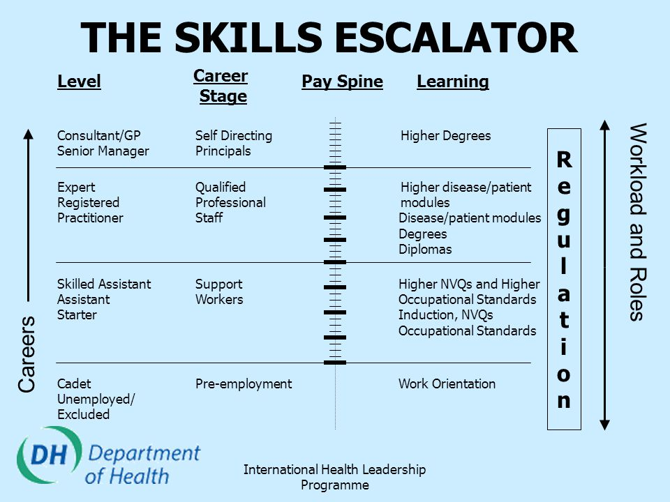 International Health Leadership Programme THE SKILLS ESCALATOR Pay SpineLearningLevel Career Stage RegulationRegulation Cadet Pre-employment Work Orie