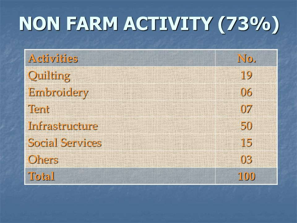 NON FARM ACTIVITY (73%) ActivitiesNo.
