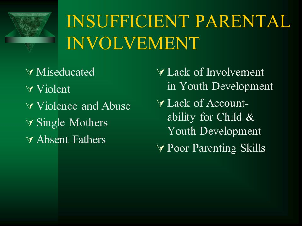 INSUFFICIENT PARENTAL INVOLVEMENT  Miseducated  Violent  Violence and Abuse  Single Mothers  Absent Fathers  Lack of Involvement in Youth Develo