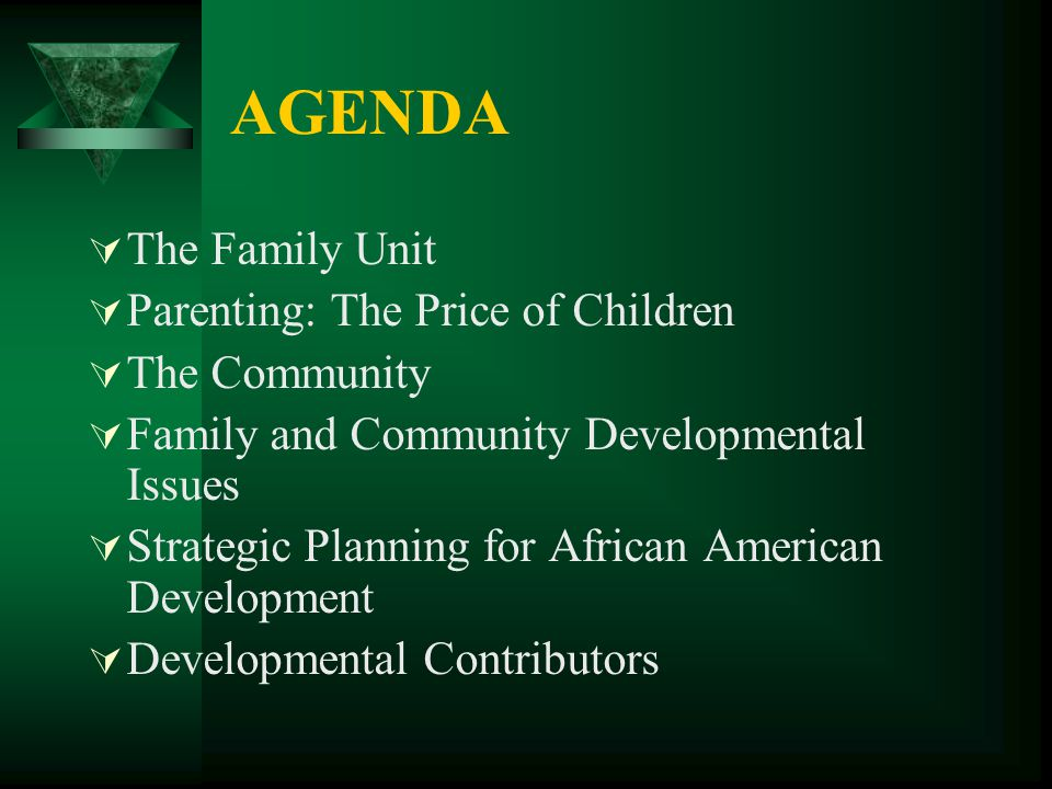 AGENDA  The Family Unit  Parenting: The Price of Children  The Community  Family and Community Developmental Issues  Strategic Planning for Afric