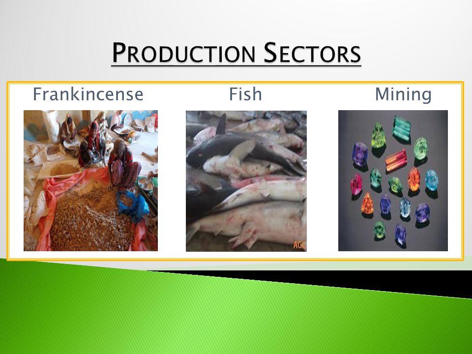 Frankincense Fish Mining