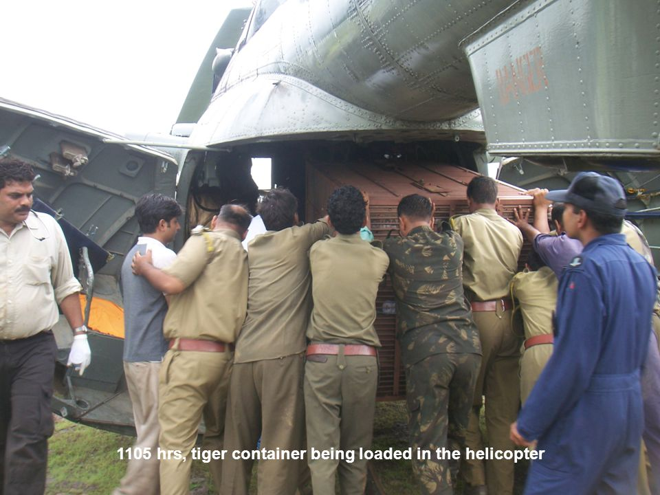 1105 hrs, tiger container being loaded in the helicopter