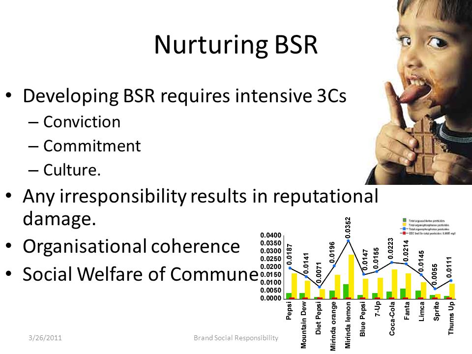 Nurturing BSR Developing BSR requires intensive 3Cs – Conviction – Commitment – Culture.