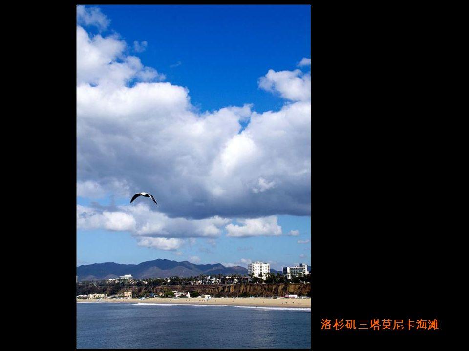 洛杉矶三塔莫尼卡海滩
