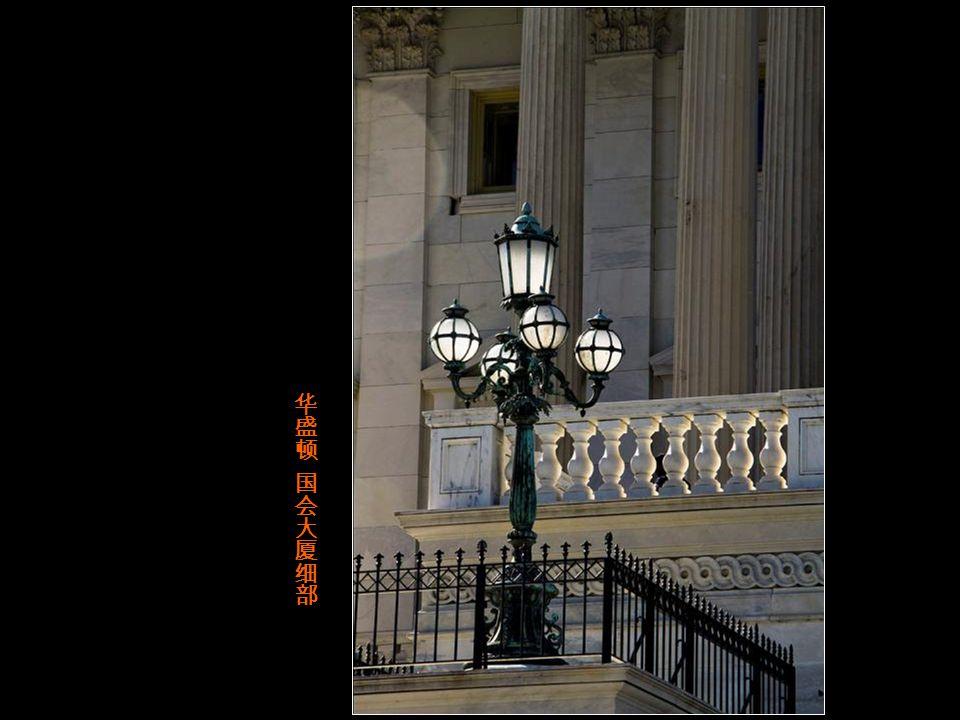 华盛顿 国会山上的议会大厦