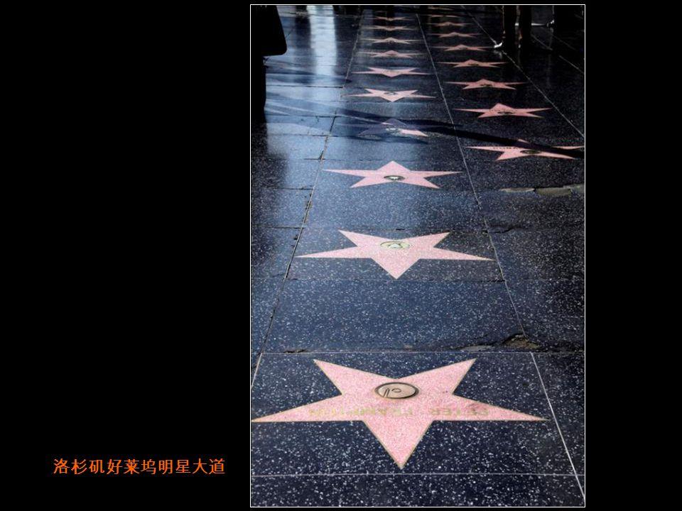 洛杉矶流浪汉 -美国犀利哥