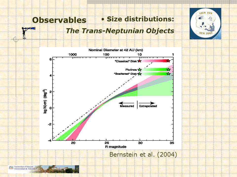 Observables Size distributions: The Trans-Neptunian Objects Bernstein et al. (2004)