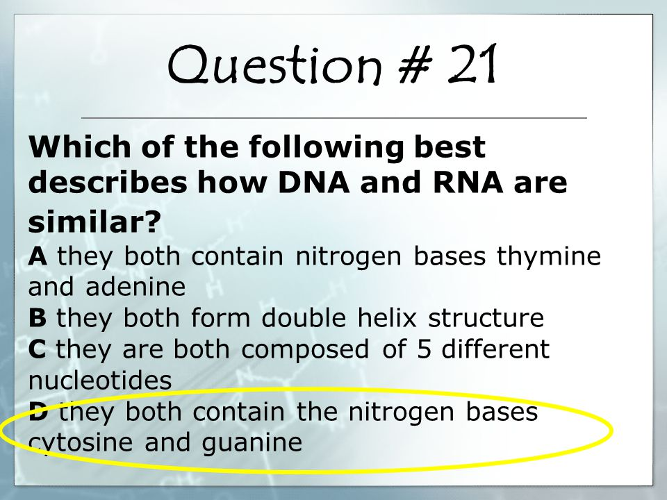 Which of the following best describes how DNA and RNA are similar.