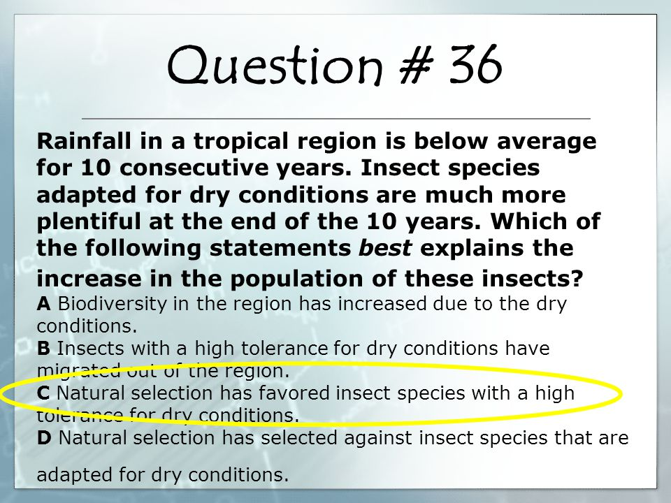 Rainfall in a tropical region is below average for 10 consecutive years. Insect species adapted for dry conditions are much more plentiful at the end