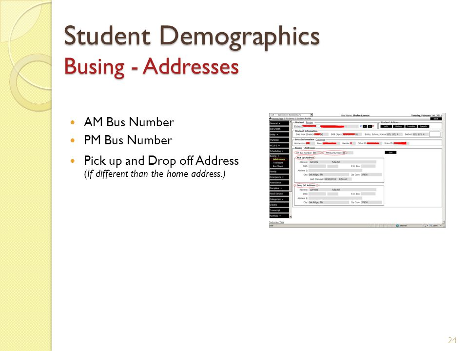 Student Demographics Busing - Addresses AM Bus Number PM Bus Number Pick up and Drop off Address (If different than the home address.) 24
