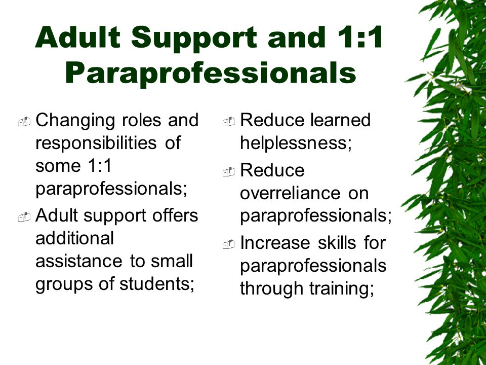 Adult Support and 1:1 Paraprofessionals  Changing roles and responsibilities of some 1:1 paraprofessionals;  Adult support offers additional assistance to small groups of students;  Reduce learned helplessness;  Reduce overreliance on paraprofessionals;  Increase skills for paraprofessionals through training;