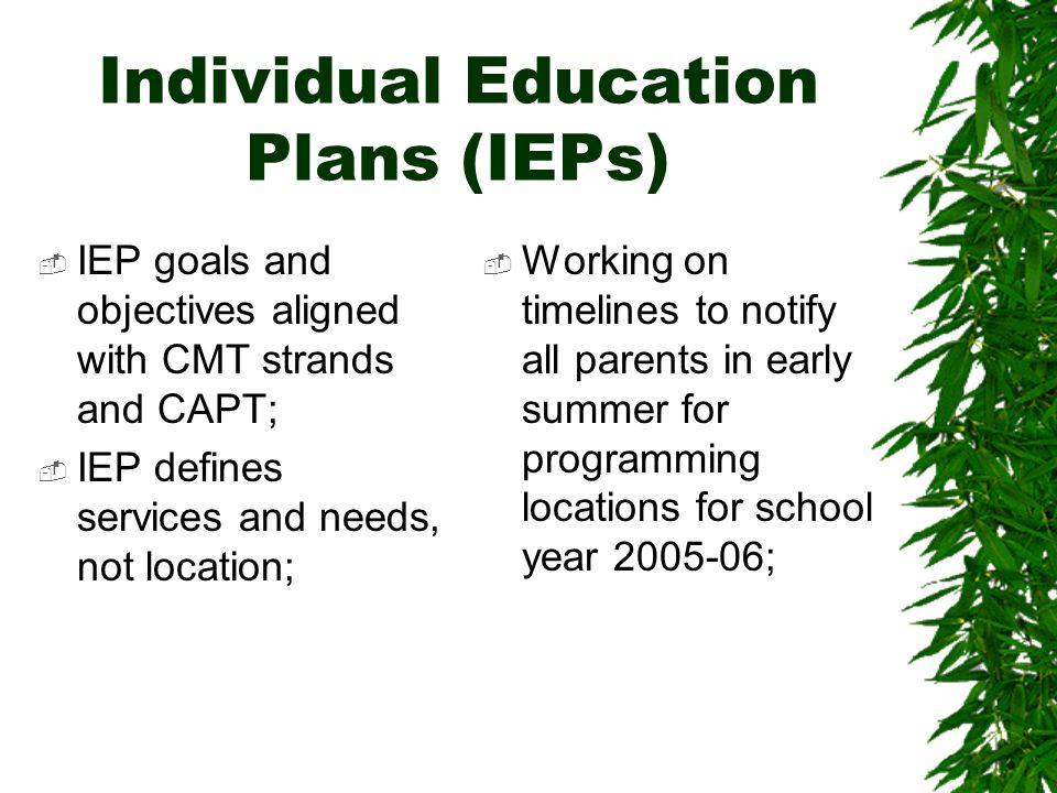 Individual Education Plans (IEPs)  IEP goals and objectives aligned with CMT strands and CAPT;  IEP defines services and needs, not location;  Working on timelines to notify all parents in early summer for programming locations for school year 2005-06;