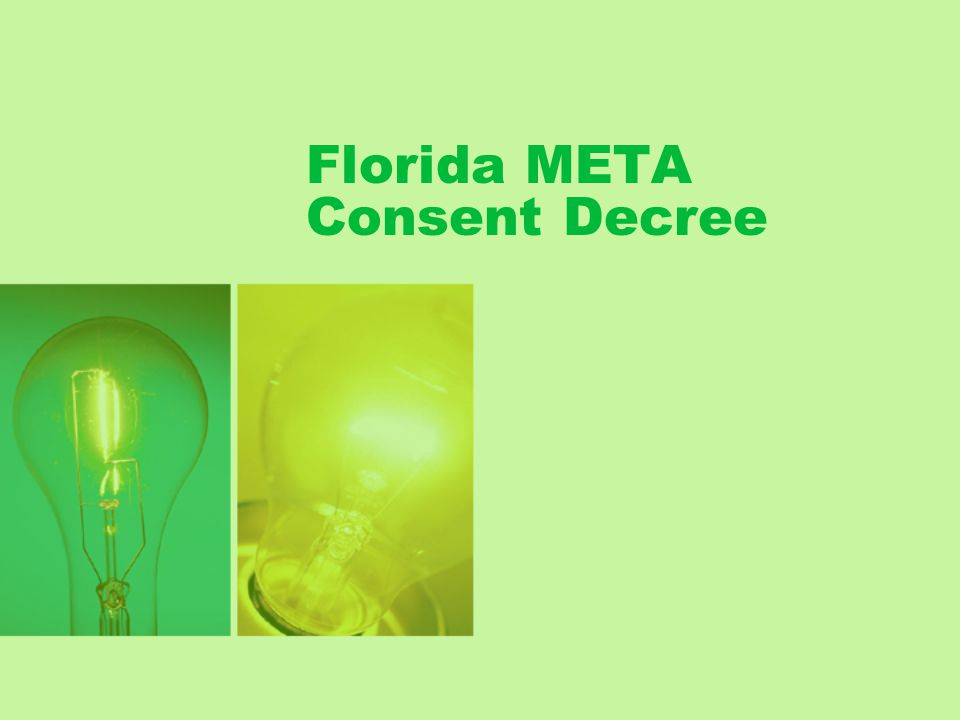 Florida META Consent Decree