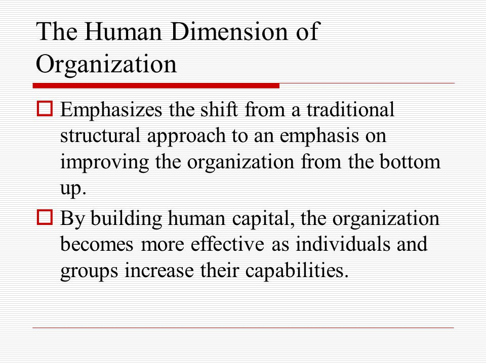The Human Dimension of Organization  Emphasizes the shift from a traditional structural approach to an emphasis on improving the organization from the bottom up.