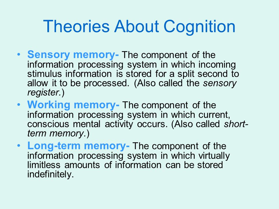 Theories About Cognition Sensory memory- The component of the information processing system in which incoming stimulus information is stored for a spl