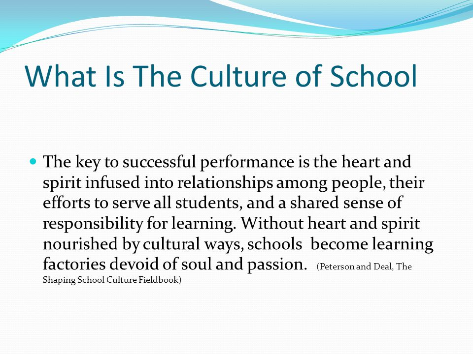 What Is The Culture of School The key to successful performance is the heart and spirit infused into relationships among people, their efforts to serv