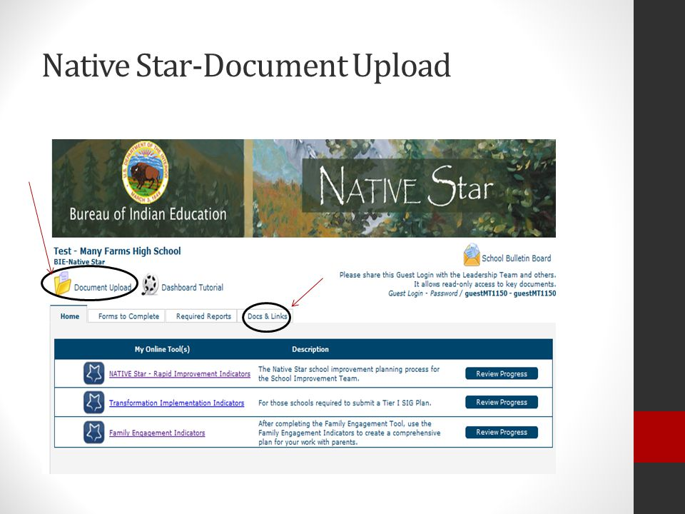 Native Star-Document Upload