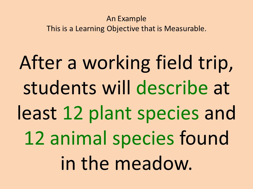 An Example This is a Learning Objective that is Measurable.