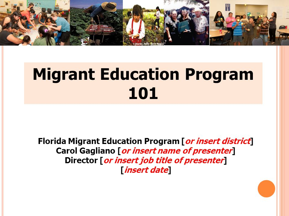 Migrant Education Program 101 Florida Migrant Education Program [or insert district] Carol Gagliano [or insert name of presenter] Director [or insert job title of presenter] [insert date]