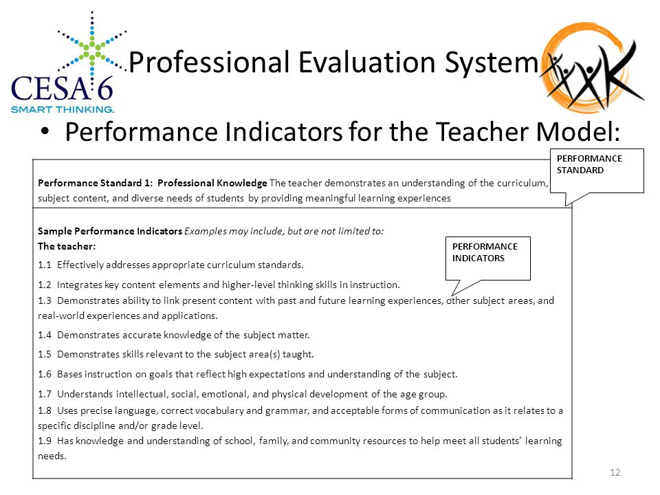 Professional Evaluation System Performance Indicators for the Teacher Model: Performance Standard 1: Professional Knowledge The teacher demonstrates an understanding of the curriculum, subject content, and diverse needs of students by providing meaningful learning experiences Sample Performance Indicators Examples may include, but are not limited to: The teacher: 1.1 Effectively addresses appropriate curriculum standards.