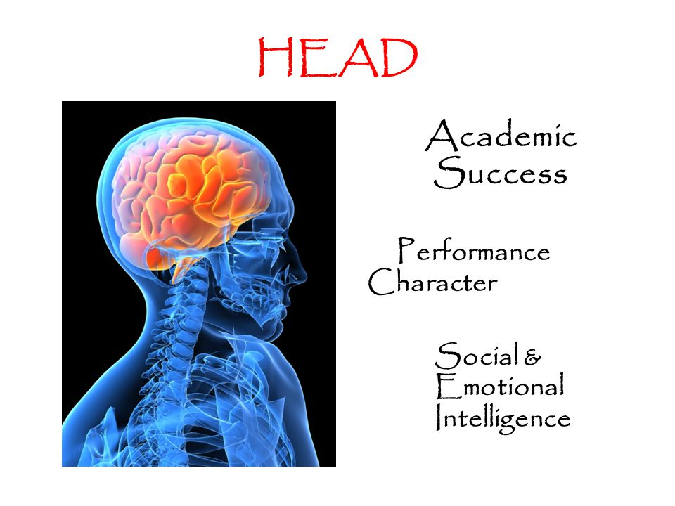 HEAD Academic Success Performance Character Social & Emotional Intelligence