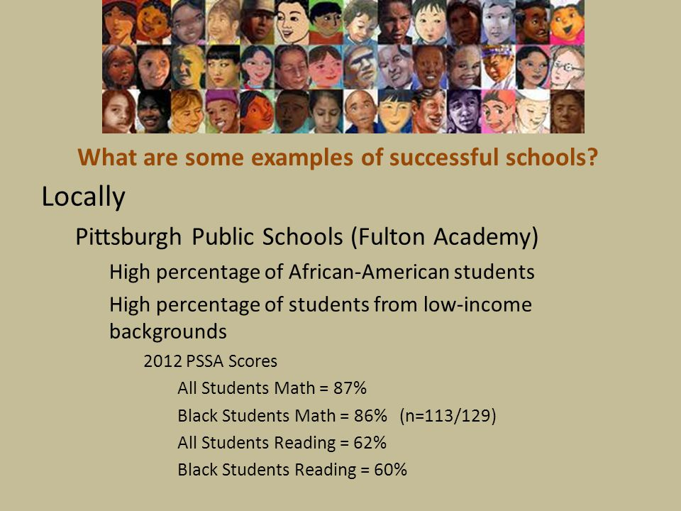 What are some examples of successful schools? Locally Pittsburgh Public Schools (Fulton Academy) High percentage of African-American students High per