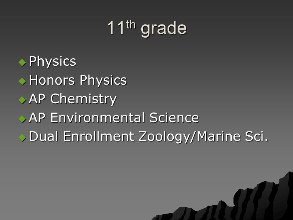 11 th grade  Physics  Honors Physics  AP Chemistry  AP Environmental Science  Dual Enrollment Zoology/Marine Sci.