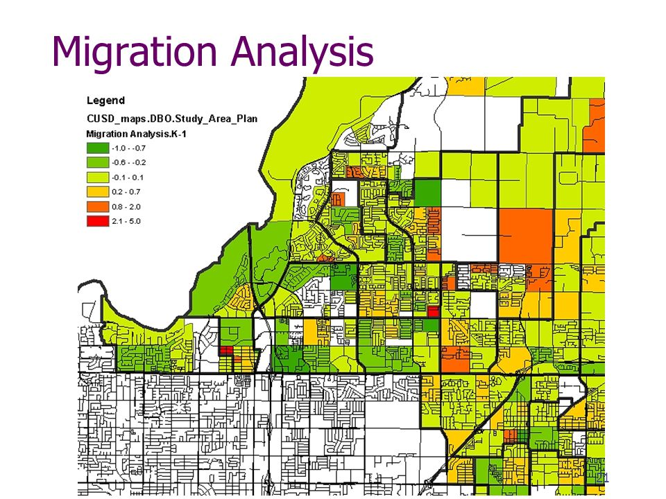 Migration Analysis 21