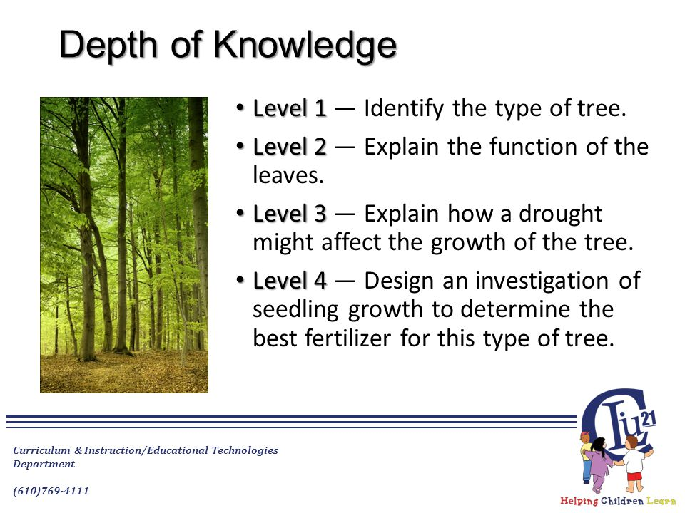 Depth of Knowledge Level 1 Level 1 — Identify the type of tree.